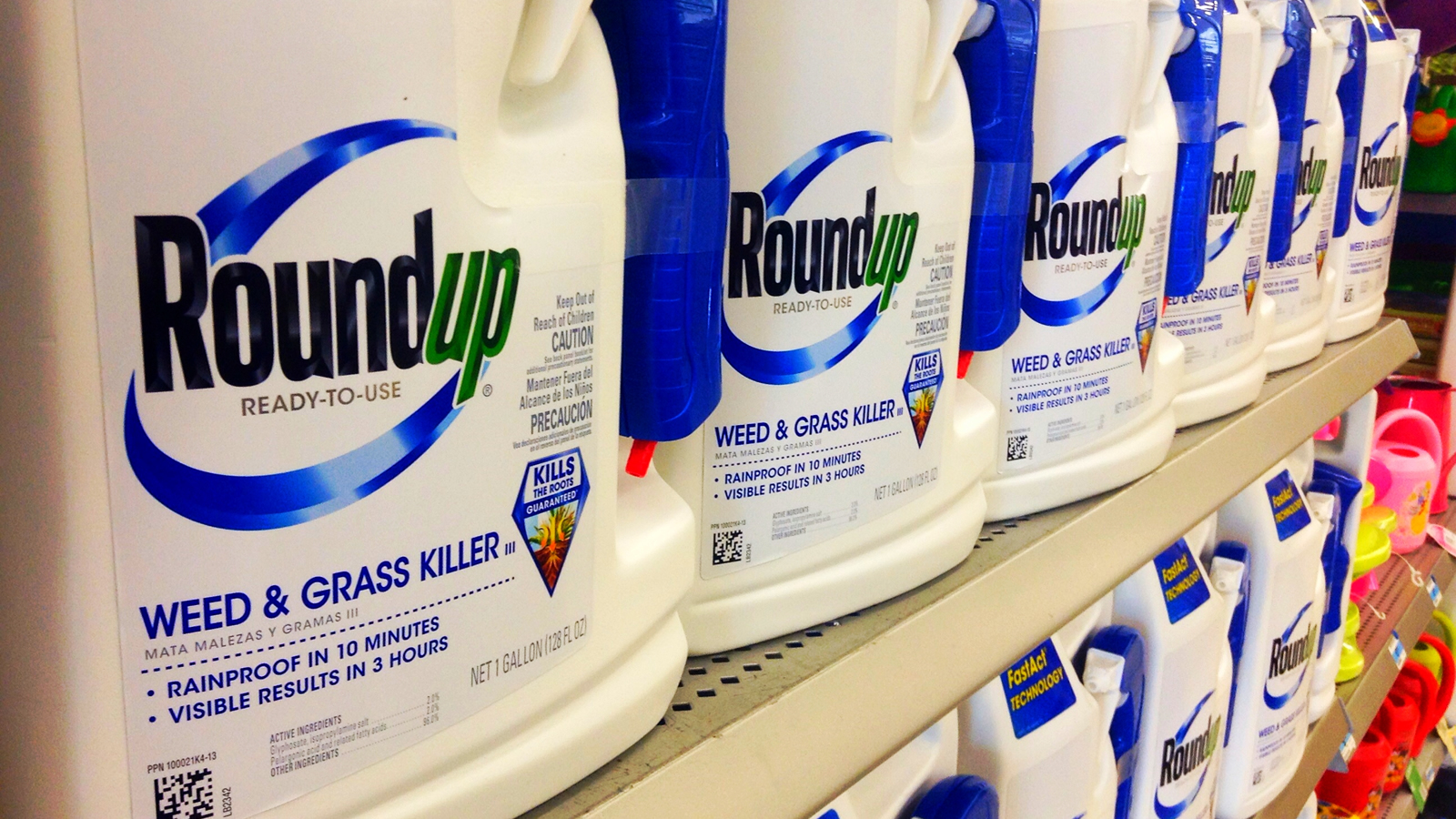 <h4>Risks To Our Health</h4><p>Glyphosate, the active ingredient in Monsanto's Roundup, has become the most widely used agricultural chemical in history. The chemicals in Roundup have been linked to cancer and other health problems.</p><em>Mike Mozart</em>